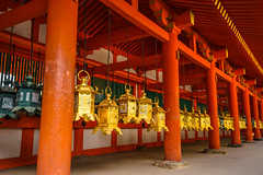 WIthin a Nara Temple (ErikFromCanada) Tags: wood travel orange japan architecture temple japanese gold shrine afternoon wideangle row rows lanterns hanging nara pillars linedup hanginglanterns a7r goldlanterns