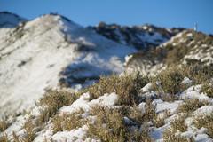 -25 (billlushana1) Tags: sunset mountain snow rock landscape minolta outdoor sony taiwan  peaks  taroko hualien  tarokonationalpark  superwide hehuanshan minoltamd  mountain 14 100peaksoftaiwan minoltamc135mmf28 taiwantop100peaks sonya7r