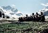 spring in high mountains (claude05) Tags: austria tirol slide oberberg selbstauslöser stubaialps timedscreengrab oberissalm
