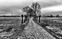 Way to Landskron Veste