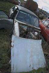 DSC_9790 (srblythe) Tags: uk classic cars ford abandoned graveyard car austin volkswagen scotland volvo rust fiat decay north rusty british scrapyard hyundai leyland vauxhall volvograveyard