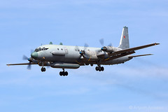 """IL-20 """"Deal with it"""" new color (Artyom Anikeev) Tags: plane airplane russia aviation airforce russian spotting avia planespotting ilyushin il20 anikeev artyomanikeev"""
