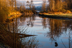 Kanaka Creek (hamiltron3000) Tags: canada reflection sunrise britishcolumbia mapleridge riverfronttrail kanakacreekregionalpark