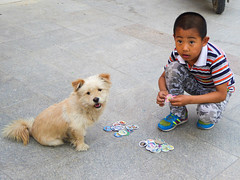 Boy and His Dog playing cards (Journey CPL) Tags: china travel boy playing photography child play card xingjiang urumqi
