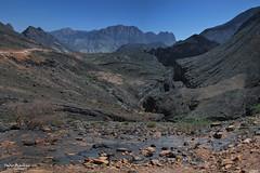 Gola del Serpente - Wadi Bani Awf (Fabio Bianchi 83) Tags: travel mountain rock asia geology oman roccia montagna viaggio geologia snakegorge hajar viaggiare wadibaniawf goladelserpente