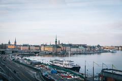 IMG_8646 (Adventurin') Tags: dog sweden stockholm aurora lapland sledding kiruna nothernlights