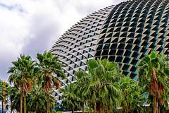 Singapore (Edi Bhler) Tags: sky building clouds himmel wolken structure bauwerk dach palme gebude kuppel 28300mmf3556 nikond800 structuredetail bauwerkdetail