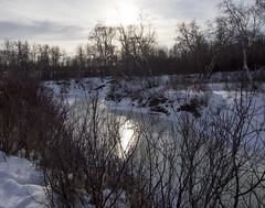 Sunlight reflection of melting water on Beaver Creek (Jim 03) Tags: grass creek river centre conservation jim beaver valley short 1984 area prairie saskatchewan meewasin 1979 sites microcosm interpretive uncultivated jimhoffman jhoffman jim03 wwwflickrcomphotosjhoffman2013 wwwjimahoffmancom