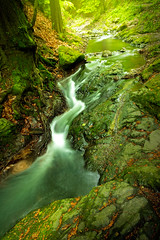 Spring stream (adambotond) Tags: nature water creek canon river landscape ma waterfall stream hungary outdoor canyon magyar visegrd naturephotography magyarorszg patak canoneos6d rdgmalomvzess canonef1635f4lisusm
