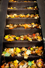 Stairway to Heaven (TDR Photographic) Tags: uk autumn light england leaves canon bath steps fallen possibles eos5d