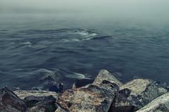 Fotografo en el Ro (ebarria_alpha) Tags: chile morning travel blue art nature water beauty wow dark landscape amazing cool fantastic view sony awesome great creative dream best dreams imagine 37 moment alpha tamron niebla valdivia increible