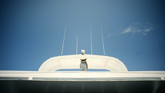 St. Petersburg Boat Owl (K. McMahon) Tags: sky sun saint st statue boat florida united scarecrow aerial owl states figurine antenna petersberg antennas stpetersberg