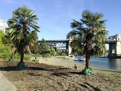 20160430_iPhone_0001 (Bruce McPherson) Tags: canada vancouver outdoors spring warm bc outdoor sunny seawall palmtrees falsecreek april sunsetbeach englishbay wander vanierpark falsecreekferries falsecreekferry englishbayseawall brucemcphersonphotography