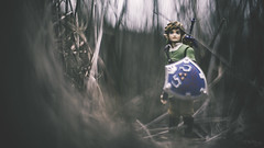 Off-Course (3rd-Rate Photography) Tags: canon toy actionfigure 50mm florida nintendo link jacksonville hyrule thelegendofzelda toyphotography figma 5dmarkiii