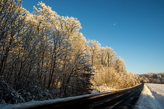 Cold winter sun (OR_U) Tags: road blue trees winter sky moon snow cold sunshine forest germany oru lowersaxony 2016 helmstedt