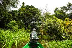 NO_Tefe0069 (Visit Brasil) Tags: travel brazil tourism nature horizontal brasil amazon rainforest natureza turismo norte amazonas ecoturismo ecotourism externa nutico tef comgente diurna riosolimes reservamamirau visitbrasil