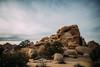 Joshua Tree (uberblake) Tags: wow photos winner there bunch vsco vscofilm