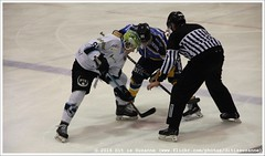 DESTIL Trappers Tilburg vs Ice Fighters Leipzig, 3 January 2016 (Dit is Suzanne) Tags: netherlands nederland icehockey 95 tilburg forward eishockey strmer linesman ijshockey views100  img3461  zuidbrabant canoneos40d oberliganord tilburgtrappers  lijnrechter destiltrappers icefighters  eishockeyoberliga  icefightersleipzig sigma18250mm13563hsm destiltrapperstilburg ditissuzanne   seizoen20152016 dennystempher saison20152016 season20152016 20152016  hubertberger 03012016 southbrabant