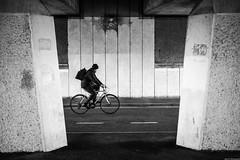 Cyclist (aljones27) Tags: bridge cambridge blackandwhite bw monochrome bike bicycle river cyclist cam cambridgeshire