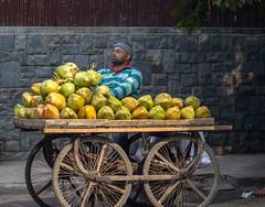 20160130-_DSC3656 (Mivr) Tags: people india coconut delhi seller hauzkhas