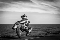 f@ this life, I am off to build a sandcastle (erzsebet kiraly) Tags: bear ireland blackandwhite bw sculpture white black beach statue bronze canon seaside greystones memory seafront bray beachbear 40d patrickoreilly canon40d bronzebear