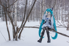 forest dyed in winter (NOZOMUN_SHBVD) Tags: winter toys sigma30mmf14dc dd volks x5 hatsune miku  dollfiedream bfigure jfigure  hatsunemiku  dd tateshinasecondfarm