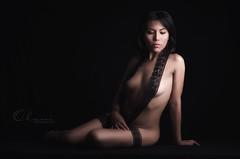 nude (Olam fotografia by Helard Guzmn) Tags: sexy luz azul nude 50mm mujer nikon y sombra lingerie eros desnudo elegante sensualidad encaje