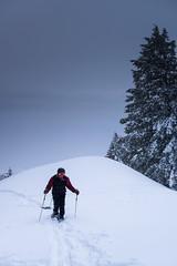 boise_peak-11 (grantiago) Tags: snowboarding skiing idaho boise snowmobiling noboarding boisepeak