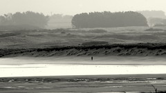 Alone in stormy morning day (patrick_milan) Tags: sea blackandwhite bw mer white storm black beach monochrome noir noiretblanc nb vague plage blanc wav tempte