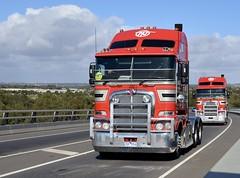 O'Neils (quarterdeck888) Tags: nikon flickr transport frosty lorry trucks convoy freight kenworth tractortrailer semitrailer overtheroad oneils haulage quarterdeck class8 campquality roadtransport k200 heavyhaulage d7100 truckphotos expressfreight australianroadtransport roadfreight jerilderietruckphotos jerilderietrucks australiantruckphotos geelongconvoyforkids geelongconvoy