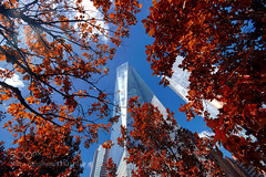 Freedom Tower NYC (magnifyk) Tags: world new york tower apple freedom big manhattan portishead centre north somerset trade 500px stuckes