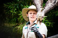 220A5766 (Andrew Arch) Tags: au australia healesvillesanctuary victoria barkingowl badgercreek