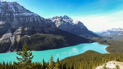 Peyto Lake (weber_sd) Tags: ca lake canada mountains alberta banffnationalpark peyto icefieldsparkway 2015 improvementdistrictno9