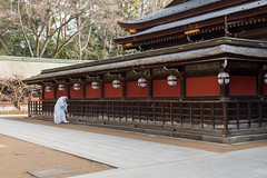20160302-083842_5K_80 (pya) Tags: kyoto  kitano  tenmangu
