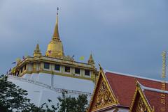 Wat Saket, the Golden Mount (cooli_#1) Tags: street old trip food museum asian thailand temple photography boat bangkok buddhist sightseeing barge silom bts thonburi เชียงใหม่ วัด ประเทศไทย sukhumwit ดอยสุเทพ earthasia seaviewrestaurant พุทธศาสนิชน asiathai 2012ancient bangkhunthain rathankosin