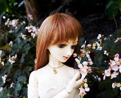 Layla - Smelling Flowers (radioactive alchemist) Tags: flowers garden spring doll bjd layla celeste mirodollwind