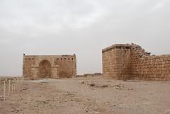 Qasr Hallabat - Umayyad Mosque and Palace (jrozwado) Tags: museum asia mosque jordan islamic  umayyad desertcastle umayyadpalace   hallabat qasralhallabat