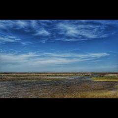 Danube Delta Biosphere #nature #naturelovers #naturephotography #lake #lakelife #water #watercolor #watercolors #outdoor #outdoors #danubedelta #danube #delta #danuberiver #wild #wildlife #wildlifephotography #romania #biosphere #sky #skyporn #skylovers # (visine_inghetate) Tags: nature square nikon outdoor delta squareformat danube iphoneography instagramapp