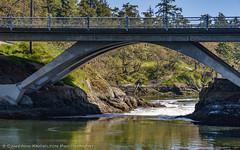 DSC_7315.jpg (Cameron Knowlton) Tags: ocean bridge canada water canal nikon bc victoria rapids inlet gorge narrows tillicum reversing d610 reversingrapids camosack tillicumnarrows canalofcamosack