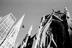 Saint Patrick's (fidelio1975) Tags: street new leica york 35mm manhattan hp5 m3 50th ilford f28 summaron