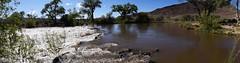 DSC_0172_924 (Derek Shore) Tags: brown tree nature water beautiful wow river carson cool nikon panoramic carsonriver nikond3300 d3300