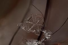 IMG_9375 (nitinpatel2) Tags: macro snowflakes patel nitin