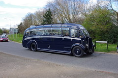 IMGP0097 (Steve Guess) Tags: uk blue england bus museum cub surrey gb cobham weybridge leyland harrington brooklands byfleet