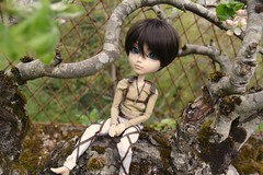 Taeyang eren jeager (juicypullip) Tags: doll pullip yeager jger jeager taeyang