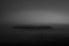 stillness (ChrisRSouthland (mostly off)) Tags: newzealand blackandwhite mist monochrome fog landscape dawn mood moody mm hawkesbay elmarit28mmf28 mmonochrom