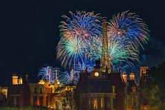 Fireworks Friday - Symphony in the Stars (Allen Castillo) Tags: epcot fireworks disney wdw waltdisneyworld worldshowcase francepavilion nikon28300 disneyshollywoodstudios symphonyinthestars nikond610 disneyfirworks