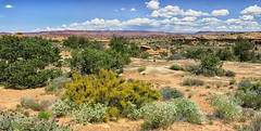 spring at Needles NP_Panorama2 (maryannenelson) Tags: panorama landscape utah nationalpark spring rocks outdoor needles formations