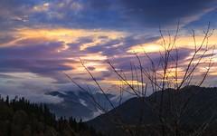 Colours of the day (RKAMARI) Tags: autumn trees colour fall nature fog forest nationalpark cities bolu yedigller
