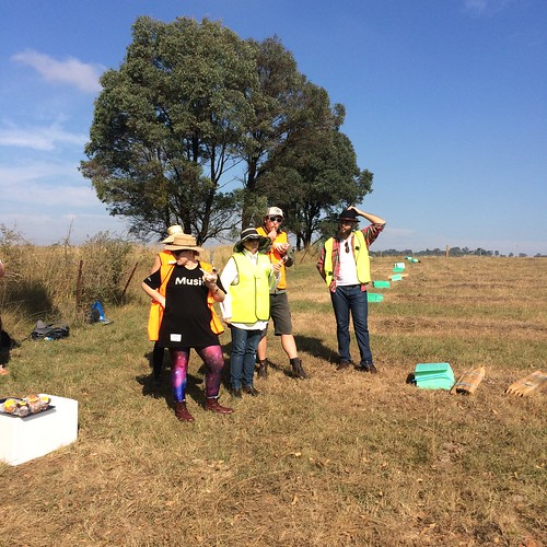 Amazing tree planting day with teams from Sydney Opera House, Disney and Splend ~ 21 April 2016