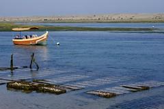 DSC01100 (hofsteej) Tags: lagune lagoon morocco maroc oysters oualidia